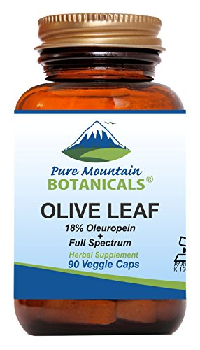 Olive Leaf Extract Capsules - 90