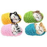 Coolayoung 4Pcs Sleeping Cat in Slipper...