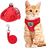 Cat Vest Harness and Small Dog Vest...