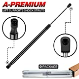 A-Premium Front Hood Lift Support Shock...
