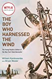 The Boy Who Harnessed the Wind (Movie...
